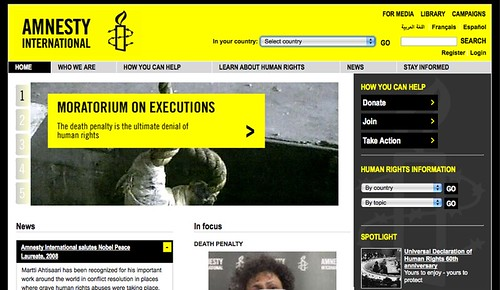 Amnesty International Oct 2008 web site improvements